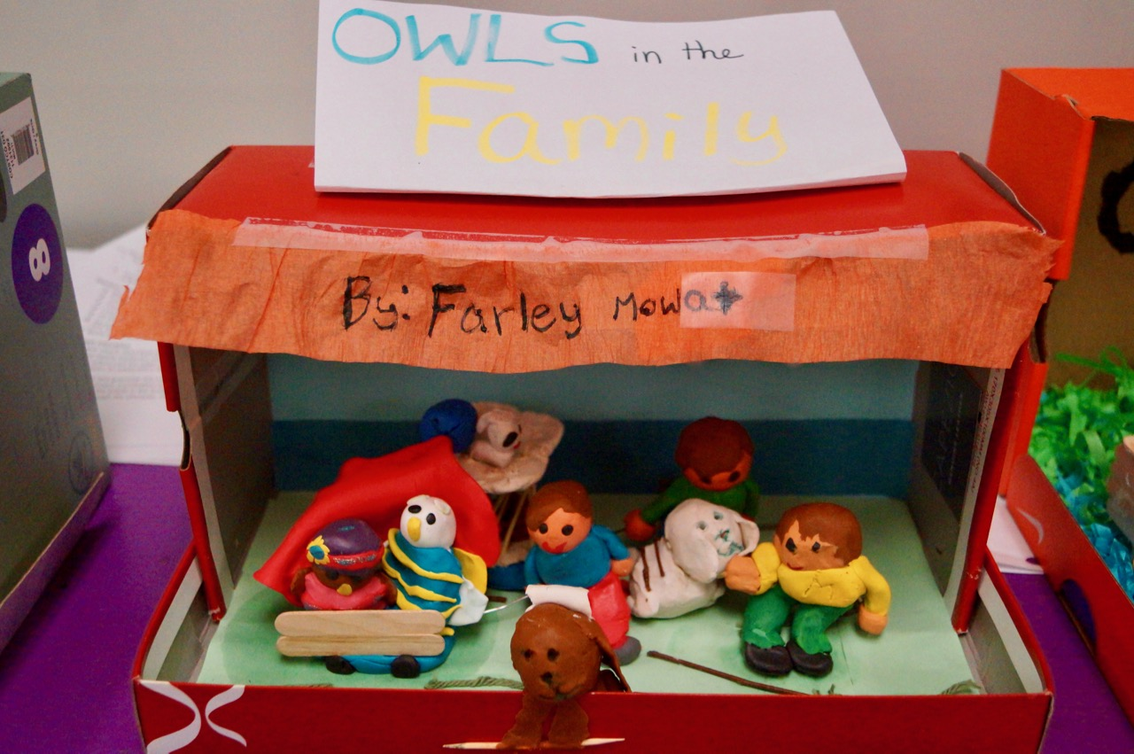Glimpse Into A Classroom: Grade 4A&B: Owls in the Family